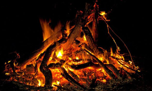 Una Romeria de Sant Antoni sense fogueres