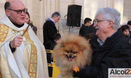 Alcoi viu la tradicional benedicció d'animals