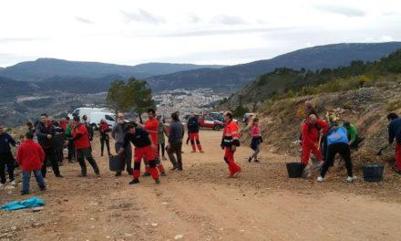 200 persones participen en una repoblació en Serelles