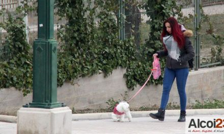 """El PP dice que """"hay confusión"""" con algunas facturas de la campaña del censo canino"""
