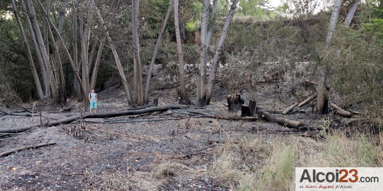 Ciudadanos solicitará un plan especial de desbroce de zonas verdes para evitar los incendios