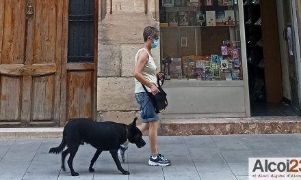 Alcoi apuesta por la concienciación para la educación y bienestar canino